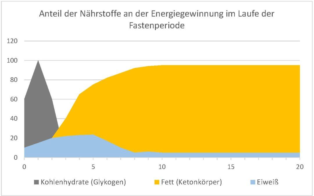 Fasten_Energieverbrauch